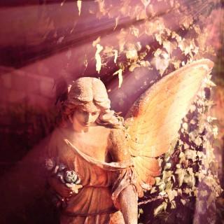 Channelen, engelen en lichtwerk
